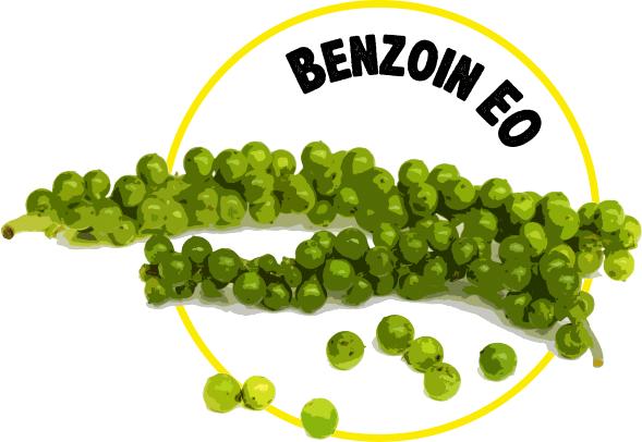 Benzoin EO